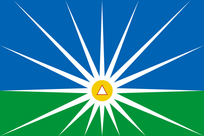bandeira-udi